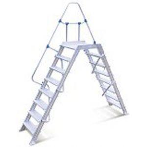 Escalier passerelle 10 marches 60°